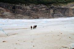 Caminhantes da geleira do Patagonia imagens de stock