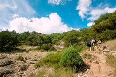 Caminhantes da montanha Imagens de Stock Royalty Free