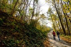 Caminhantes da montanha no outono Imagens de Stock