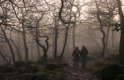 Caminhantes da névoa Fotografia de Stock
