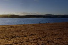 Caminhantes do cão na praia de Exmouth no inverno fotos de stock