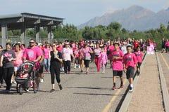 Caminhantes do fundraiser do câncer da mama imagens de stock royalty free