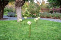 Caminhantes do pernas de pau feitos das varas, de uma couve e de reginae de um Strelitzia foto de stock royalty free