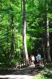 Caminhantes em Ash Cave Fotografia de Stock Royalty Free