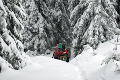 Caminhantes em montanhas de Carpathians do inverno ucrânia Foto de Stock Royalty Free