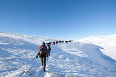Caminhantes em montanhas do inverno Imagem de Stock