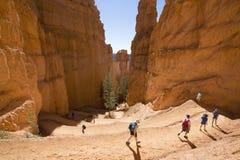 Caminhantes na experimentação do jardim do Queens em Bryce Canyon National Park em Utá Imagem de Stock
