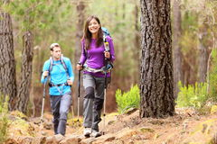 Caminhantes na floresta