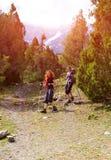 Caminhantes na fuga da floresta Fotos de Stock