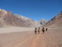 Caminhantes na montanha Fotografia de Stock