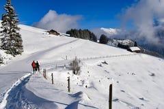 Caminhantes no inverno Imagens de Stock Royalty Free