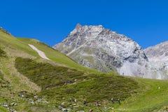 Caminhantes nos cumes austríacos, editoriais Fotografia de Stock Royalty Free