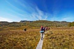 Caminhantes por terra na fuga em Tasmânia, Austrália imagem de stock royalty free
