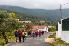 Caminhantes que vagueiam pelo país fotografia de stock royalty free