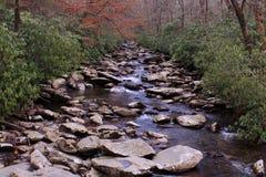 Caminhar através das madeiras da montanha nós encontramos Rocky River pequeno fotos de stock
