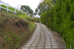 Caminho ao lado da conversão Fotografia de Stock Royalty Free