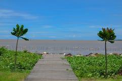 Caminho ao mar Imagens de Stock