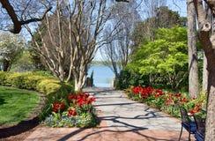 Caminho bonito do jardim Fotografia de Stock Royalty Free