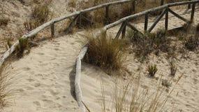 Caminho coberto por dunas de areia imagem de stock royalty free