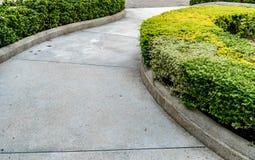 Caminho concreto no jardim Imagem de Stock