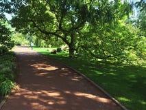 Caminho da argila no parque urbano no verão Fotos de Stock Royalty Free
