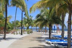 Caminho da praia na colheita Caye, Belize foto de stock royalty free