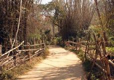 Caminho de bambu através da ilha de Kuruva Fotografia de Stock