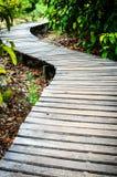 Caminho de madeira. fotografia de stock