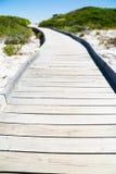 Caminho de madeira através da duna Imagem de Stock