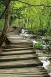 Caminho de madeira na floresta da mola perto do córrego Foto de Stock