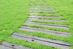 Caminho de madeira no fundo verde fresco do gramado Fotos de Stock Royalty Free