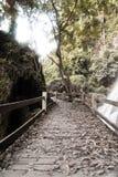 Caminho de madeira velho Fotos de Stock