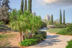 Caminho de passeio Deserted no holocausto Memorial Park foto de stock