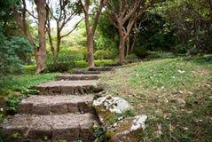 Caminho de pedra Fotografia de Stock Royalty Free