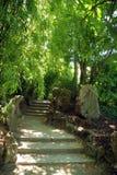 Caminho de pedra Imagem de Stock Royalty Free