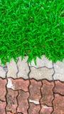 Caminho de pedra com grama em um jardim verde Fotografia de Stock Royalty Free