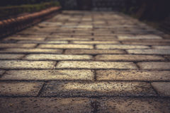 Caminho de pedra do pavimento do vintage com ponto de desaparecimento como o fundo antigo no estilo do vintage Imagens de Stock Royalty Free