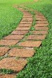 Caminho de pedra em um parque verde luxúria Foto de Stock
