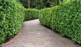 caminho de pedra entre a conversão Imagem de Stock Royalty Free