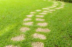 Caminho de pedra na grama. fotografia de stock