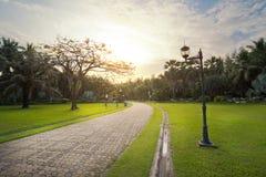 Caminho de pedra no jardim Fotografia de Stock