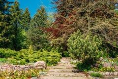 Caminho de pedra no parque do jardim Projeto do jardim Foto de Stock Royalty Free