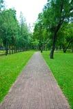 Caminho de pedra no parque do lumpini Foto de Stock Royalty Free
