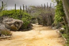 Caminho de Sandy com o céu escuro na parte traseira Foto de Stock