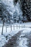 Caminho do inverno Foto de Stock