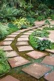 Caminho do jardim Fotografia de Stock