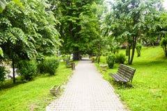 Caminho do pavimento concreto no parque verde da cidade com árvores verdes e os bancos vazios Jardim na cidade urbana na cena da  imagem de stock