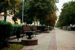 Caminho e banco de madeira em um parque bonito Imagens de Stock Royalty Free