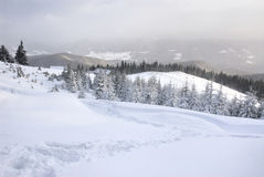 Caminho em montanhas nevadas Fotografia de Stock