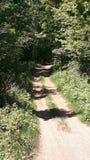 Caminho ensolarado, aventuras dos plenos verões Fotografia de Stock Royalty Free